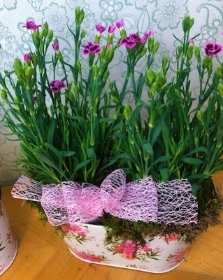 Pink kisses planter